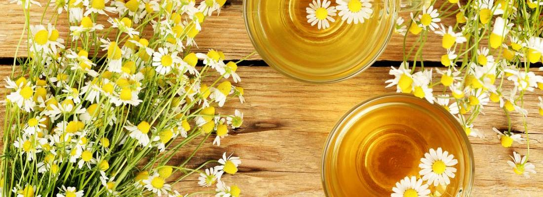 Benefits of Chamomile Tea empress2inspire.blog