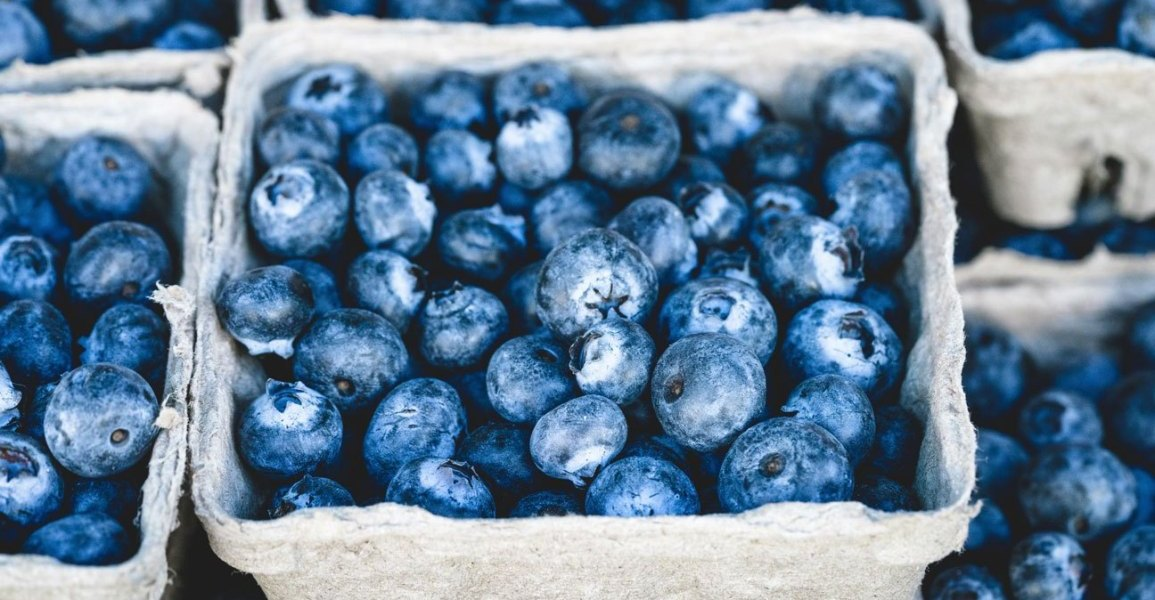 Health Benefits of Blueberries empress2inspire.blog