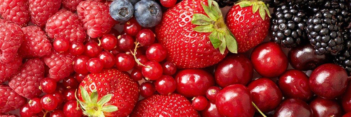 Health Benefits of Berries empress2inspire.blog