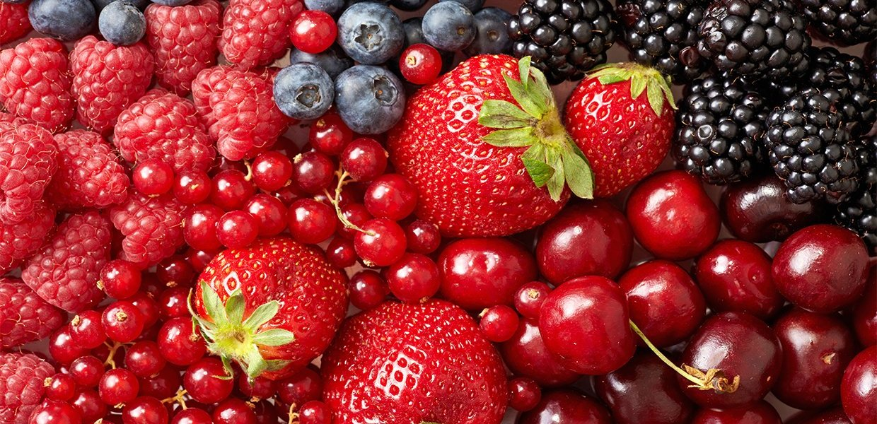 Health Benefits of Berries empress2inspire.blog